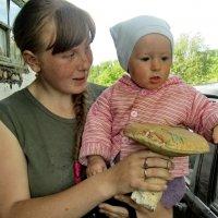 Белый гриб :: Светлана Рябова-Шатунова