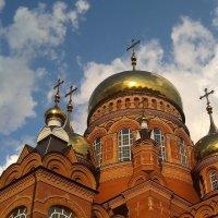 Купола под облаками. :: Elena Izotova