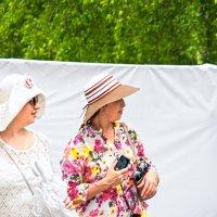 Дамы в шляпах на фоне белого экрана :: Albina