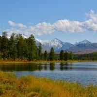На озере. :: Валерий Медведев