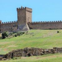 Генуэзская крепость.Крым. :: Лариса Исаева