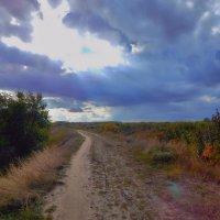 Солнце брызнуло из-за туч! :: Елена (Elena Fly) Хайдукова
