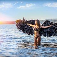 Я так хочу летать, Но это не возможно.  Где крылья мне достать? Без них подняться сложно! :: Елена ПаФОС