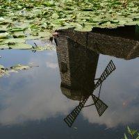 ... В опрокинутом Мире мир очень красив .. :: Алёна Савина