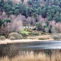Ирландия - зеленый остров. :: Людмила