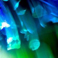 подводная сказка :: павел бритшев