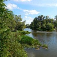 Самарская область. Река Сок :: Надежда