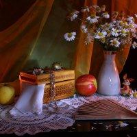 Люблю ромашки луговые... :: Нэля Лысенко