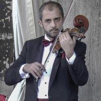 Venezia. Il musicista in un caffè Florian in piazza San Marco. :: Игорь Олегович Кравченко