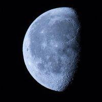 Moon :: Антон Орловецкий