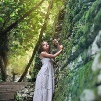 Любимые мхи и Абхазия :: Дина Мурзаева