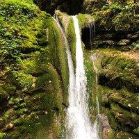 Лесной водопад.Рача Грузия :: Александр