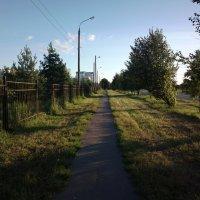 Вечерняя дорожка :: Николай Филоненко