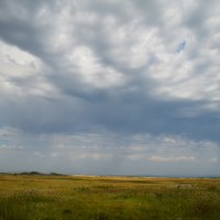 Дождь приближается :: Татьяна Соловьева