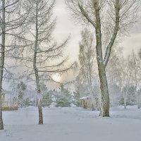 Морозный день :: Екатерина Торганская