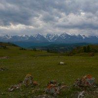 Северо-Чуйский хребет в конце лета. :: Валерий Медведев