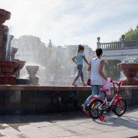 Прогулка по фонтану :: Валерий Михмель