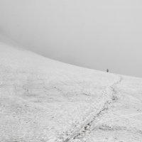один в тумане :: Ларико Ильющенко