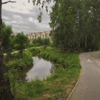 Любимое место отдыха гурманов... :: Юрий Велицкий