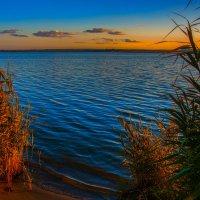 Осень ранняя тихо крадётся... :: Виктор Малород