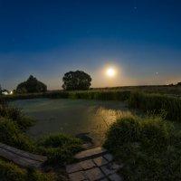 Тихая летняя ночь ... :: Роман Шершнев