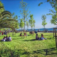 Пикник в Бостанджи. Стамбул :: Ирина Лепнёва