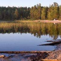 Озеро Боярское. Карелия. :: Наталия Владимирова