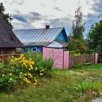 В  деревне.... :: Валера39 Василевский.
