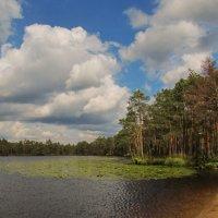 У озера :: Татьяна Осипова(Deni2048)