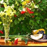 Августа последние деньки.... :: galina tihonova