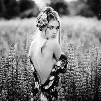 шелковый цветок :: koyokin photo