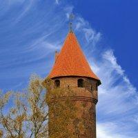 Башня Нижнего замка :: Сергей Карачин