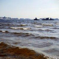 Финский залив. :: Жанна Викторовна