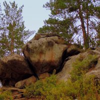 Природный ландшафт . :: Мила Бовкун