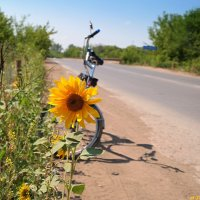 И одинокий страж дороги счастливого пути мне пожелал.. :: Андрей Заломленков
