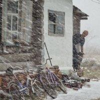 Первый снег :: Светлана Рябова-Шатунова