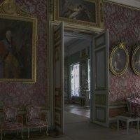 Малиновая комната в усадьбе Кусково :: Александра