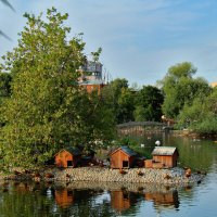 Московский зоопарк :: Yuriy V