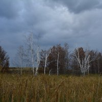 Красоты озера горького :: Лариса Димитрова