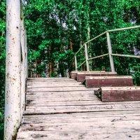 мост :: анна ёлка