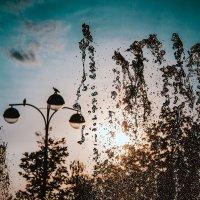 Заходящее солнце играет в брызгах фонтана :: Krasnodar Pictures