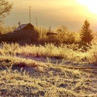 Зимний рассвет :: Светлана Рябова-Шатунова