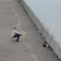 Ловись рыбка! :: Александр Сапунов