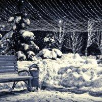 зимний парк :: Kirill Maltsev