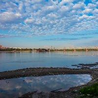 Река Обь. :: Виктор Шпаков
