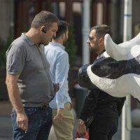 Подслушивающая корова :: Александр Степовой