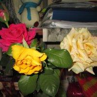 Букет из роз :: Алексей Кузнецов