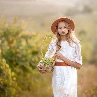 Виноградник :: Anna Filipanova