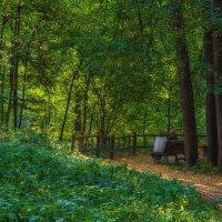 В парке. :: Александр Орлов