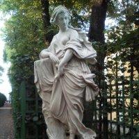 Скульптуры в Летнем саду. :: Светлана Калмыкова